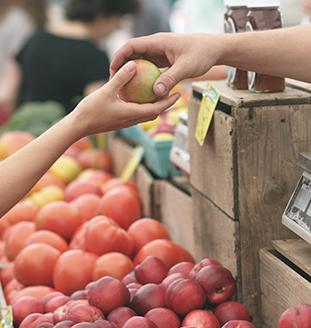 ORICoop helps grow healthy food
