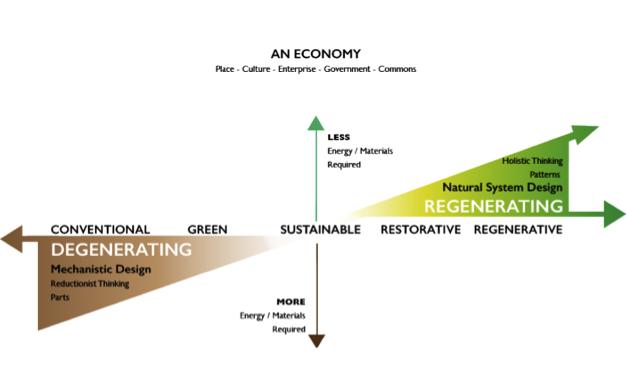 Redesigning economics based on ecology