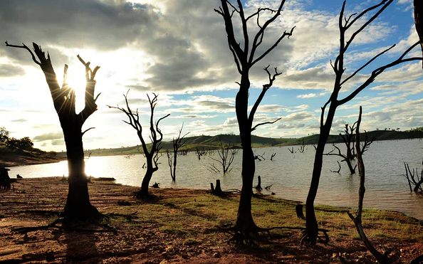 Climate change an 'existential security risk' to Australia, Senate inquiry says