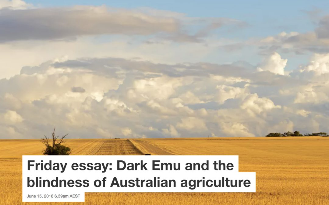 Friday essay: Dark Emu and the blindness of Australian agriculture