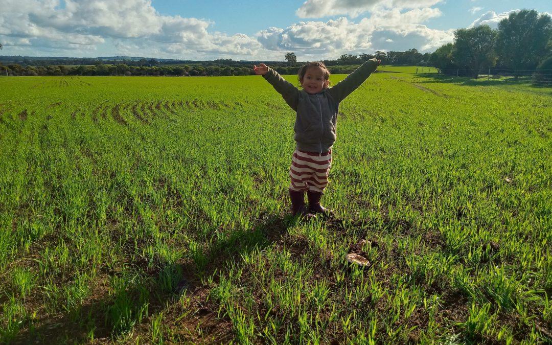 next generation organic farmers